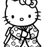 Hello kitty 16