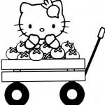 Hello Kitty-53