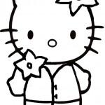 Hello kitty-83