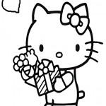 Hello kitty-222