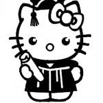 Hello kitty- 248