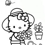 Hello kitty-269