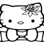 Hello kitty-313